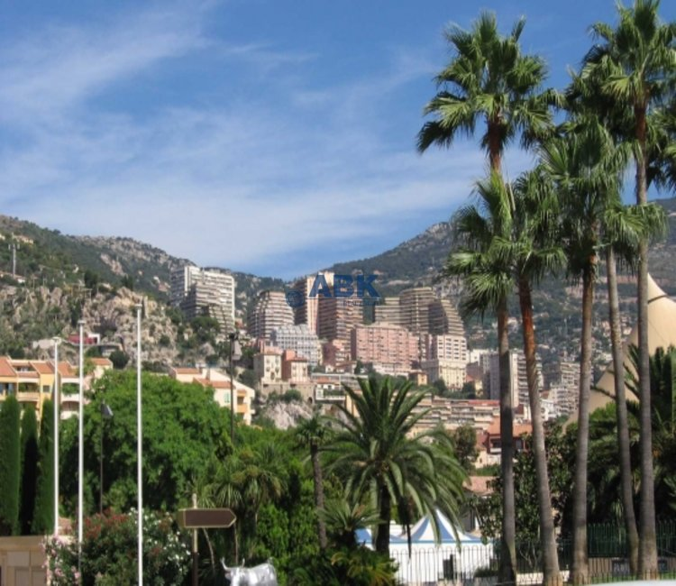 BEAUTIFUL DUPLRX APARTMENT - FONTVIEILLE