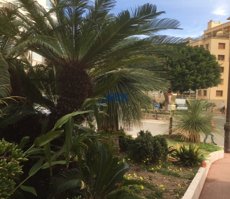 ROC FLEURI - 2 PIECES AVEC TERRASSE ET JARDIN PRIVATIF