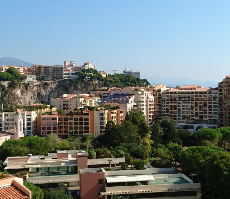 ONE BEDROOM APARTMENT - FONTVIEILLE